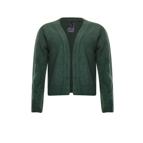Poools ladieswear pullovers & vests - cardigan compact yarn. available in size 38,40,42,44,46 (green)