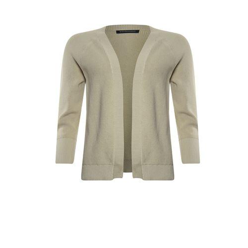 Anotherwoman dameskleding truien & vesten - vest met v-hals. beschikbaar in maat 36,38,40,42,44,46 (bruin)