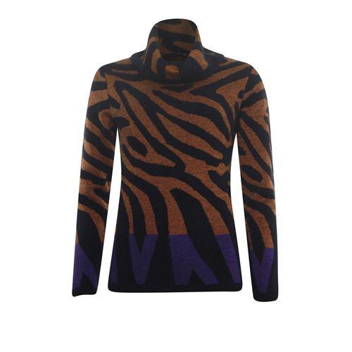 Roberto Sarto dameskleding truien & vesten - koltrui in dessin. beschikbaar in maat 38 (bruin,multicolor,paars,zwart)