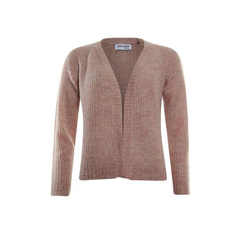 Anotherwoman dameskleding truien & vesten - vestje. beschikbaar in maat 36,38,40,42,44,46 (roze)