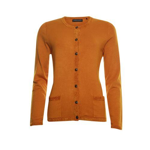 Roberto Sarto dameskleding truien & vesten - vest. beschikbaar in maat 46 (oranje)