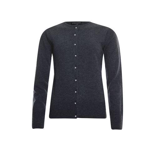 Roberto Sarto dameskleding truien & vesten - vest. beschikbaar in maat 40 (grijs)