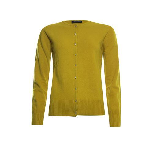 Roberto Sarto dameskleding truien & vesten - vest. beschikbaar in maat 44,46 (olijf)